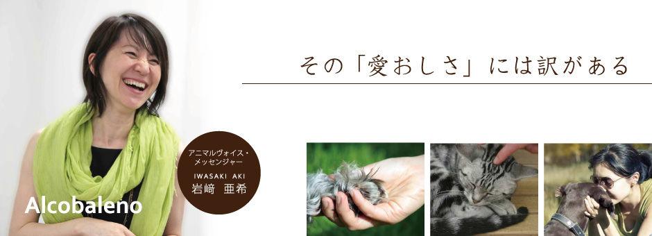 動物の気持ち通訳します~アルコバレーノのブログ イメージ画像