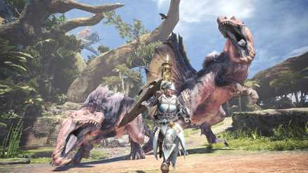 MHW_暴れん坊