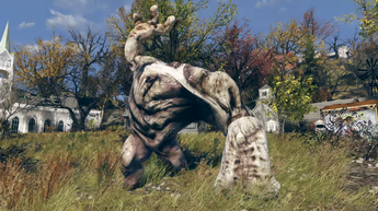 Fallout 76(5)