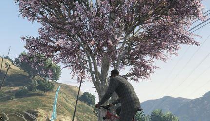 GTA 桜