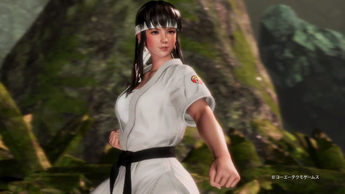 DEAD OR ALIVE 6(2)