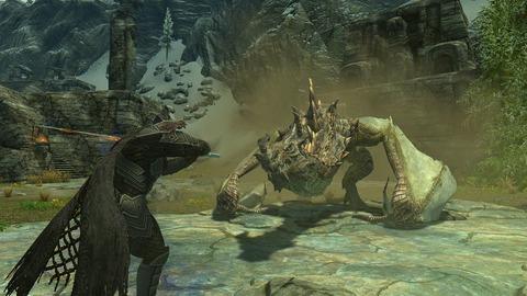 ドラゴンと対峙