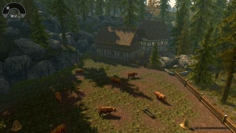 森の中の牧場