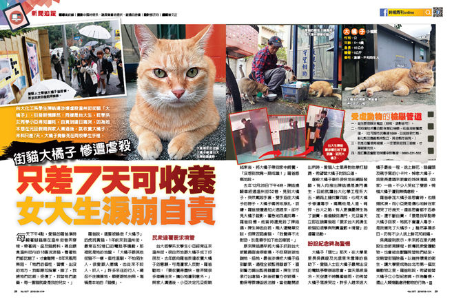 猫を虐殺した犯人、裁判所から出て来た所、猫好きに取り囲まれ虐待される
