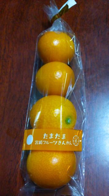 DSC_0514blog