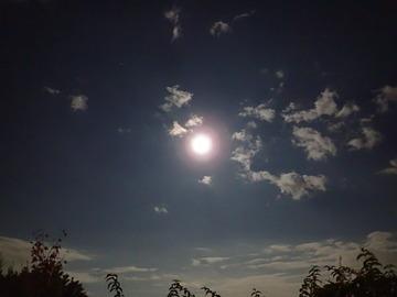 今宵、裸足(はだし)で、月を愛でる。