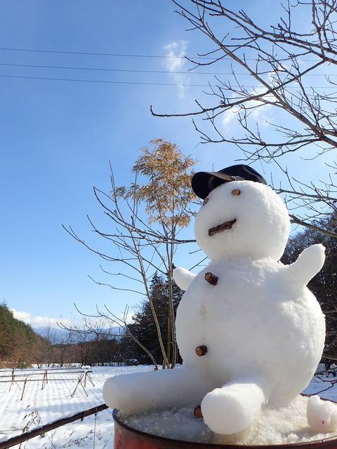 今日もいい日だ!雪だるまが叫ぶ