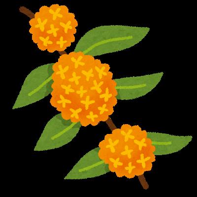 flower_kinmokusei