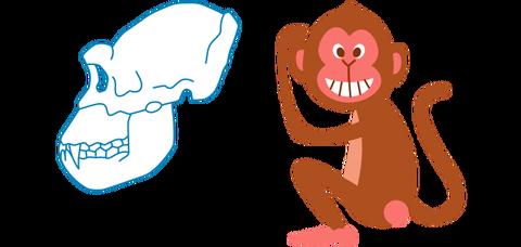 猿の口のつくり