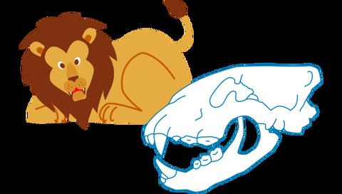 ライオンの口のつくり