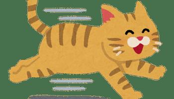 run_cat_smileneko