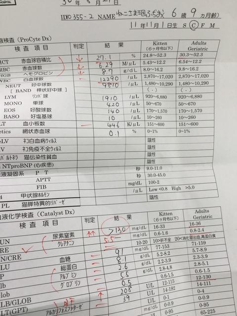 CCF20770-C4EA-4EA9-B866-299C4B9FD56A