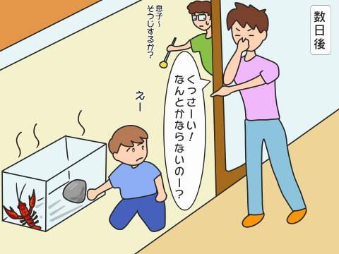 re-ザリガニ (3)