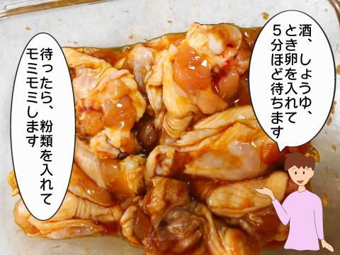 reフライドチキンイラスト (2)
