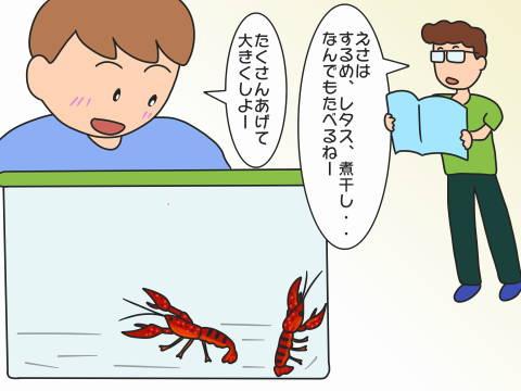 re-ザリガニ (1)