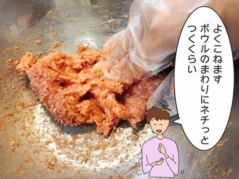 re1-10シュウマイ (5)