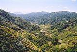 275px-Rice_Terraces_Banaue