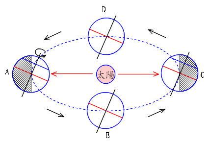 働きアリ : science 地球と宇宙... : 教材 時計 : すべての講義