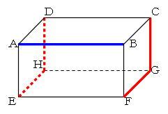 働きアリ : mathematics 空間図...