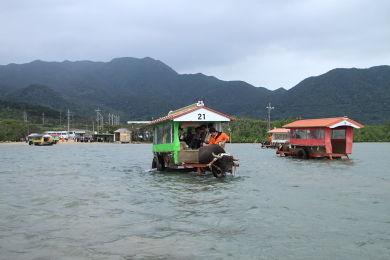 水牛車 (2)