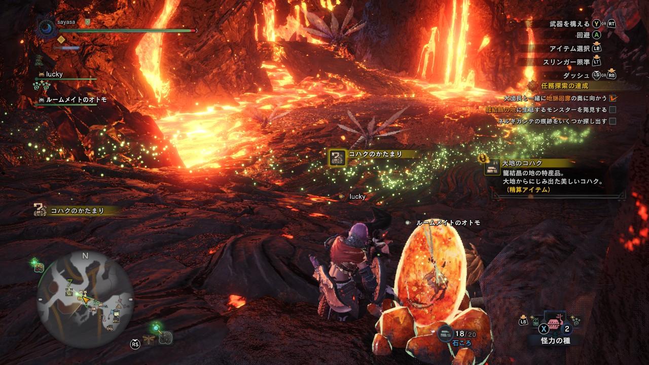 龍結晶の地 生息するモンスターを発見する
