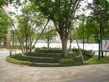 波紋の広場