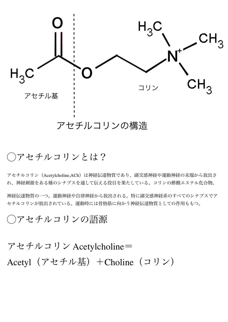 出典 :blog.livedoor.jp   アルツハイマー病ではまた、... アルツハイマーと