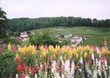 シュピーツ城庭園からの眺め