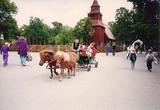 スカンセン 野外博物館1