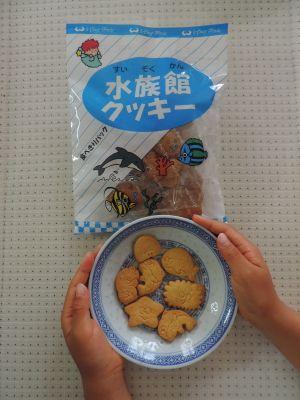 水族館クッキー