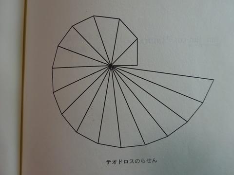 DSC04039