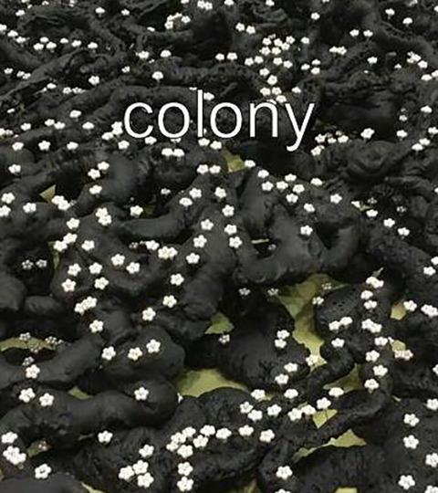 奥田誠一 colony-棲家