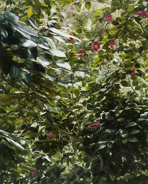 彼方の庭‐椿