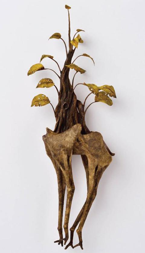 江本創 能動植物
