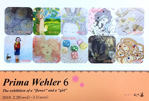 Prima Wehler 6