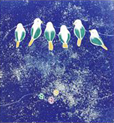 豊島舞 ちいさな鳥のはじまりの歌