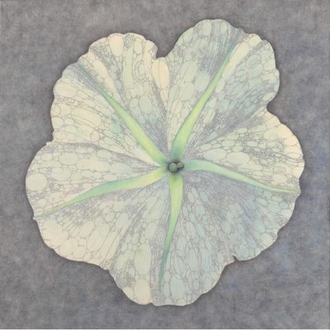 藤本麻野子 個展 「 春 」