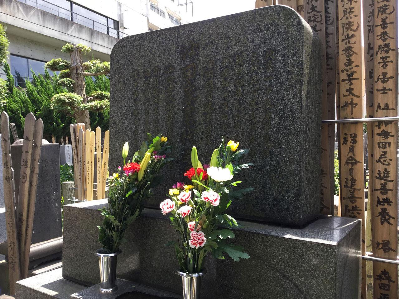 新選組流山隊隊長日記:沖田総司