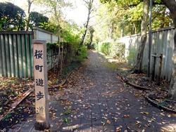 桜町遊歩道1