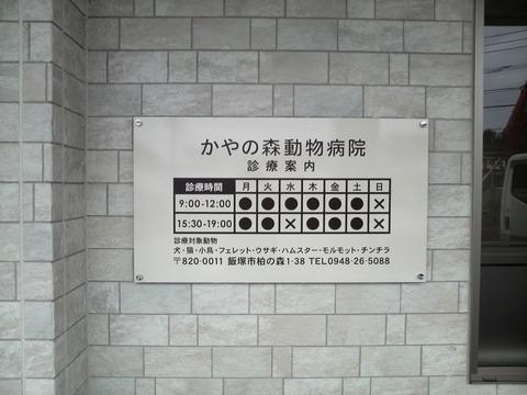 sP1000407