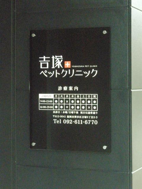 ssP8060145