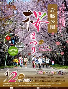 徳島県阿南市羽ノ浦町 岩脇公園桜まつり 2017