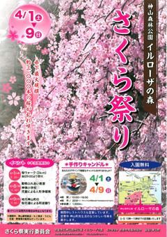 徳島県名西郡神山町 神山森林公園 イルローザの森 さくら祭り 2017