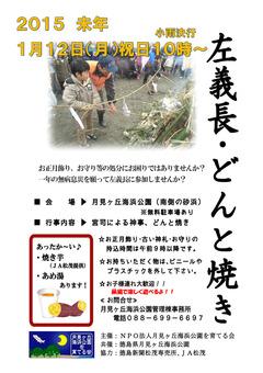 徳島県板野郡松茂町 月見ヶ丘海浜公園 左義長 どんと焼き 2015