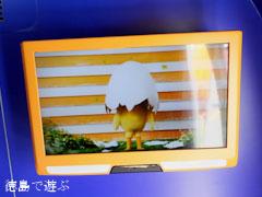 日清食品 チキンラーメン ひよこちゃんバス