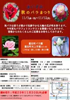 徳島県板野郡藍住町 あいずみ 秋のバラまつり 2017