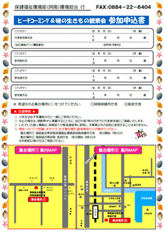 徳島県 牟岐町 松ヶ磯 ビーチコーミング 磯の生きもの観察会 2019