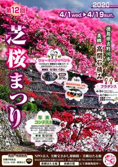 徳島県吉野川市美郷 第12回 高開石積み シバザクラまつり 2020