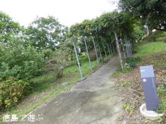 徳島県徳島市国府町 徳島大学 薬用植物園 2016
