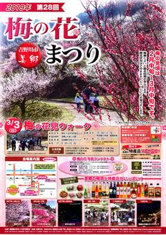 徳島県吉野川市 美郷 梅の花まつり 2019